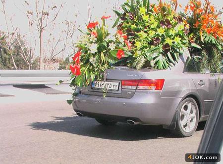 ماشین عروس تابلو ، انگار جنگله