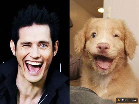 میمیک زیبای سگ پتیبل و جیم کری