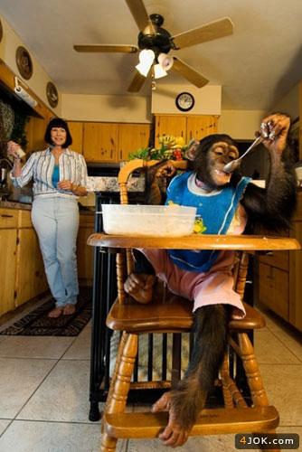 این خانوم این میمون رو به فرزندی قبول کرده !